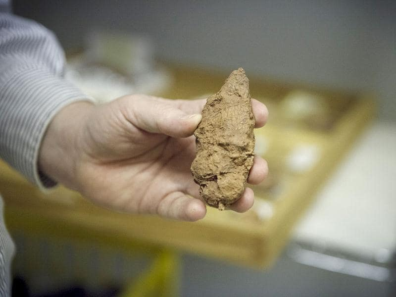 Assistant curator David Temple, famous for discovering fossized vegetarian dinosaur scat, shows an example of a meat eaters scat that will be on display in the new Hall of Paleontology at the Houston Museum of Natural Science. AP/Michael Stravato