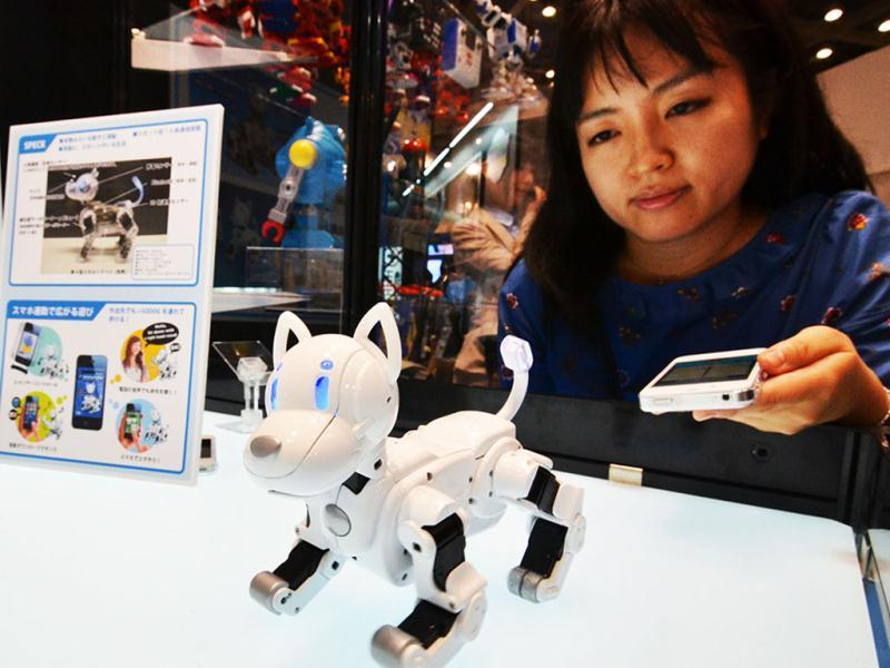 An employee of Japanese toy maker Tomy displays