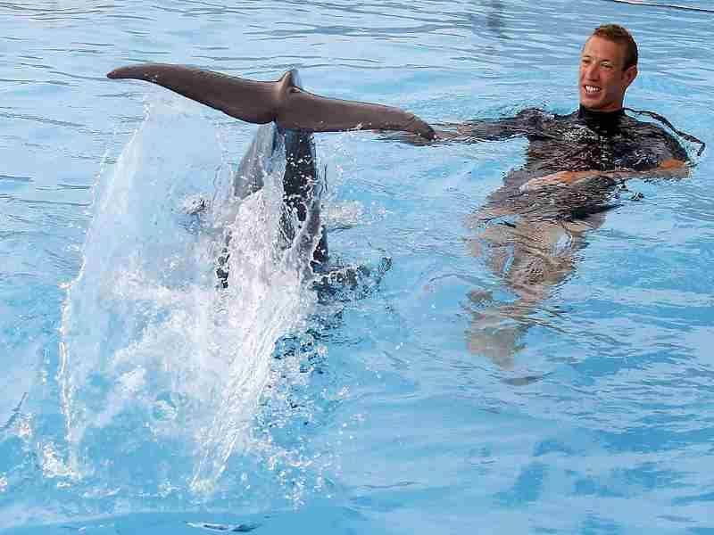 Alain Bernard plays with a dolphin at the Marineland aquatic park in Antibes. Reuters/Eric Gaillard