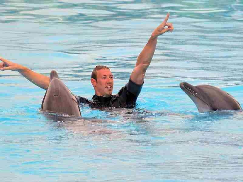 French swimmer Alain Bernard gestures as he swims with dolphins at Marineland, an animal exhibition park in Antibes, southern France. Bernard has qualified for the 2012 Summer Olympic Games in London. AFP/Valery Hache