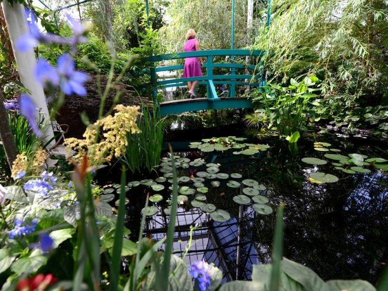 A visitor walks on a replica of French painter Claude Monet's Japanese footbridge arching over a water lily pool encircled by willow trees and flowering shrubs at his house in Giverny during 'Monet's Garden' exhibition, at the New York Botanical Garden. The exhibition evokes Monet's lush garden at Giverny, the impressionist's home from 1883 until his death in 1926, featuring a seasonally changing display of flora such as poppies, roses, foxgloves, irises, delphiniums and water lilies. AFP/Emmanuel Dunand