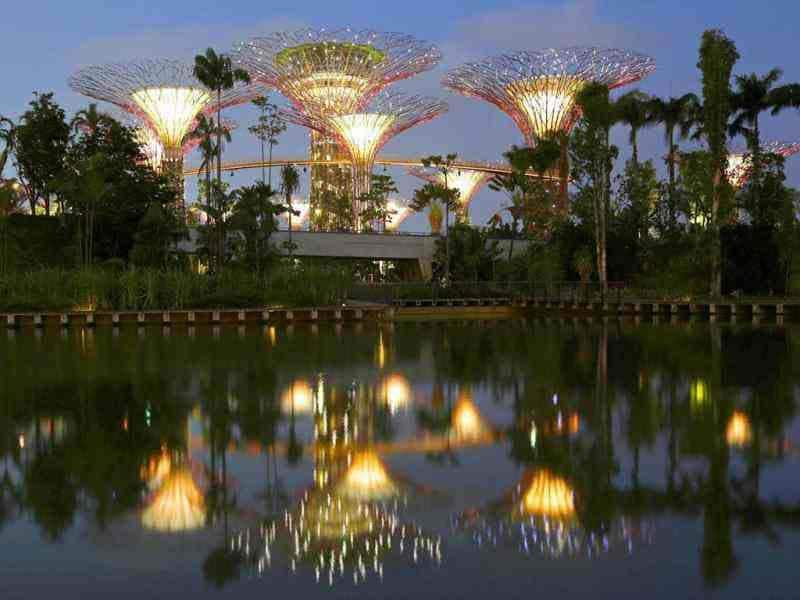 The giant concrete tree-like structures of Supertrees Grove of the Gardens by the Bay are pictured at dusk in Singapore. The 101-hectare gardens situated at the heart of Singapore's new downtown at Marina Bay have two greenhouses and 220,000 plants from almost every continent. Reuters/Tim Chong