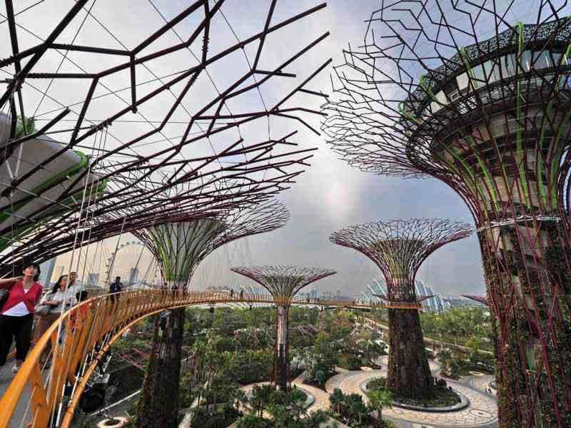 Visitors meander on the skyway walk linking across the towering Supertrees Grove in the Garden by the Bay in Singapore. AFP/Roslan Rahman