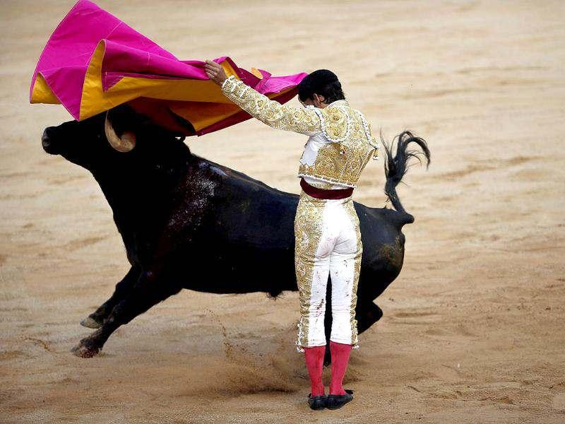 Spanish bullfighter Antonio Nazare performs a pass to a bull during the third bullfight of the San Fermin festival in Pamplona. Reuters/Susana Vera