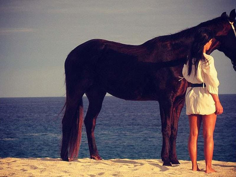 Kim Kardashian tweeted a pic with horse.
