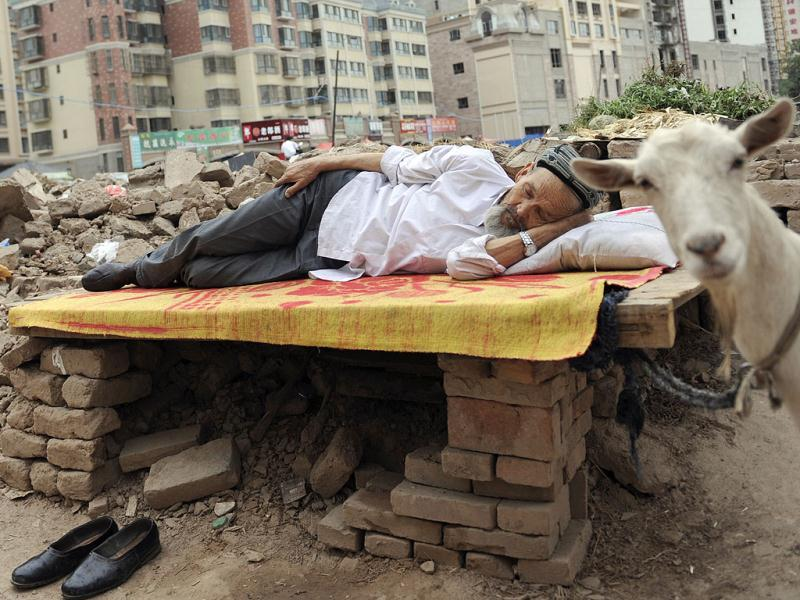 An ethnic Uighur man takes a nap on a board as his goat, which is tied to the board, stands next to him at a demolition site in Aksu, Xinjiang Uighur Autonomous Region. Reuters Photo