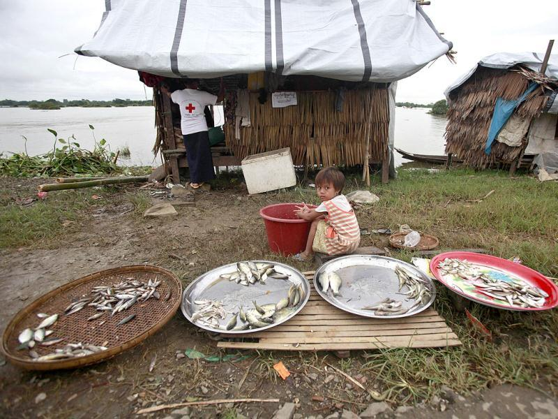 A flood-affected child selling fish near temporary shelters set up on high ground outside Pathein, in the Irrawaddy delta region of Myanmar. AFP Photo