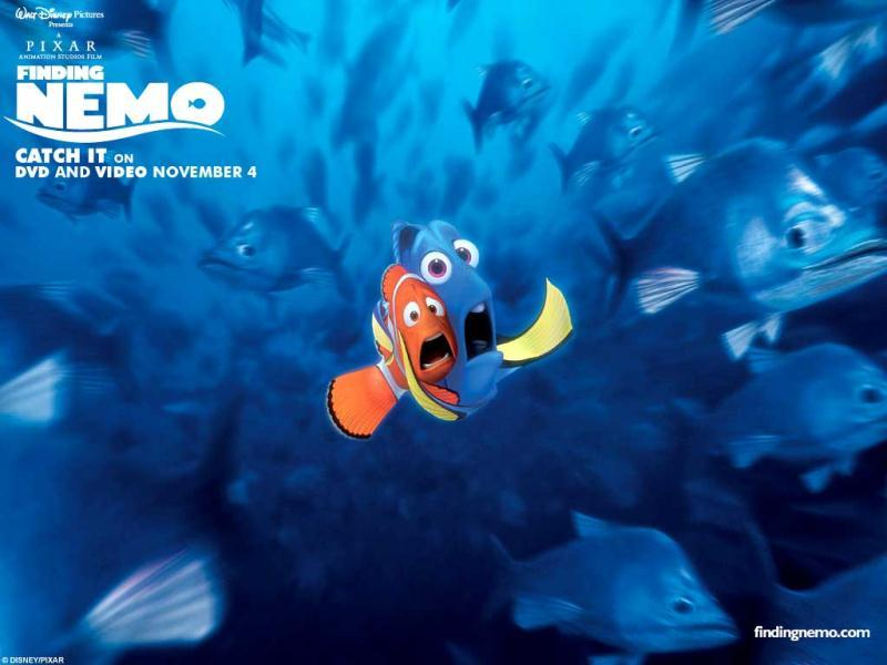 While looking for Dad, Nemo finds hilarious company in the absent-minded Dory (played by none other than comedian Ellen Degenres)