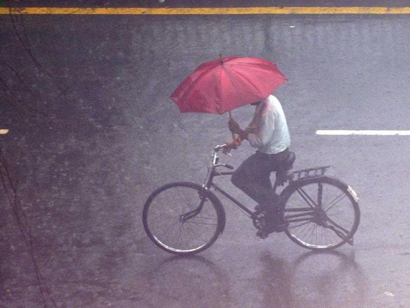 A pedestrian cycles with an umbrella as it rains in New Delhi. The monsoon rains were 2% below average in the week to August 22. AFP Photo/Prakash Singh