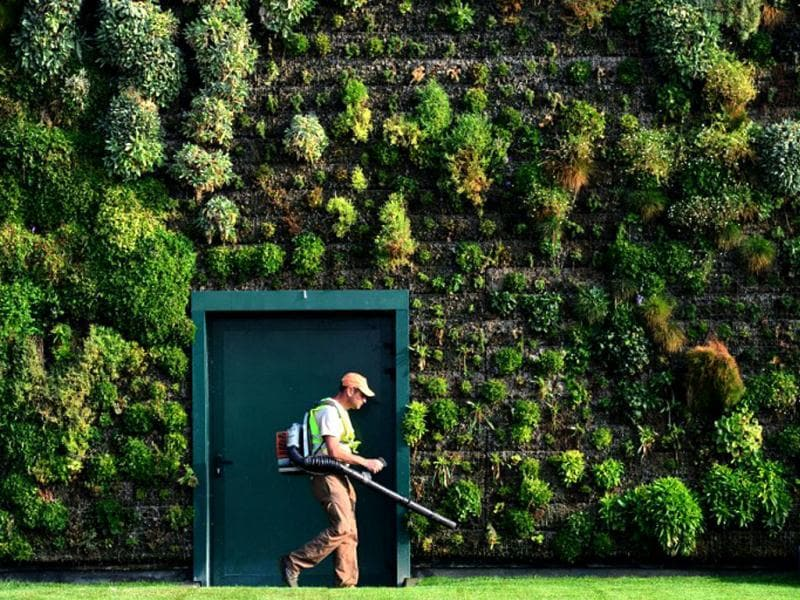 A gardener takes care of the largest vertical garden on a shopping mall facade in the town of Rozzano, near Milan. The Fiordaliso commercial complex was awarded on September 17 the Guiness world record for its 1,262.85 square meter wall garden composed of over 44,000 plants and 200 flowers. (AFP Photo)