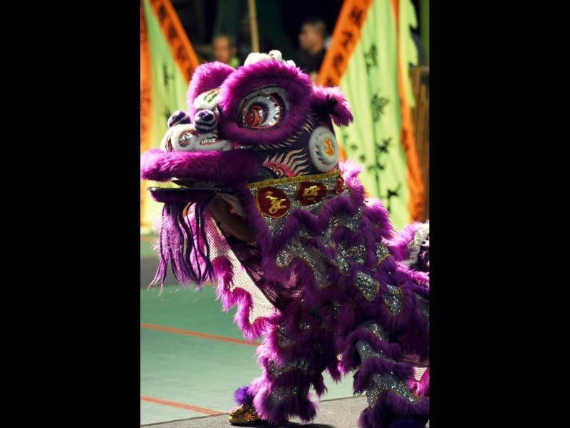 Chinese team members perform a lion dance during the world championships in Hong Kong. A total of eight teams take part in the lion dance which is a form of traditional dance in Chinese culture, in which performers mimic a lion's movements in a lion costume. (AFP photo/Laurent Fievet)