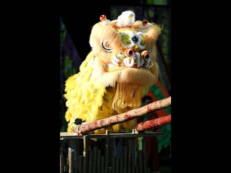 Hong Kong team members perform a lion dance during the world championships in Hong Kong. A total of eight teams take part in the lion dance which is a form of traditional dance in Chinese culture, in which performers mimic a lion's movements in a lion costume. (AFP photo/Laurent Fievet)