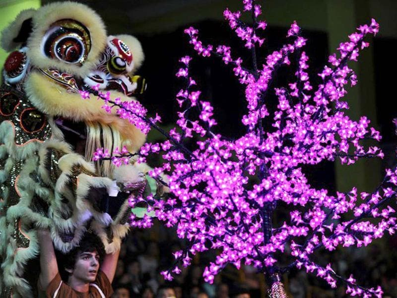 Italian team members perform a lion dance during the world championships in Hong Kong. A total of eight teams take part in the lion dance which is a form of traditional dance in Chinese culture, in which performers mimic a lion's movements in a lion costume. (AFP photo/Laurent Fievet)