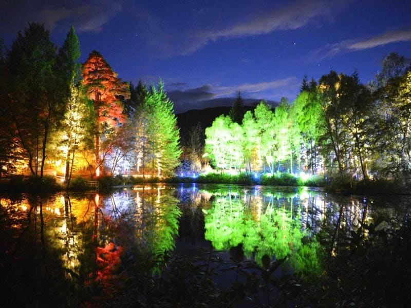 Trees are lit by coloured lights in Faskally Wood, in Pitlochry, Scotland. The event, commemorates the 10th anniversary of the Enchanted Forest. (Reuters)