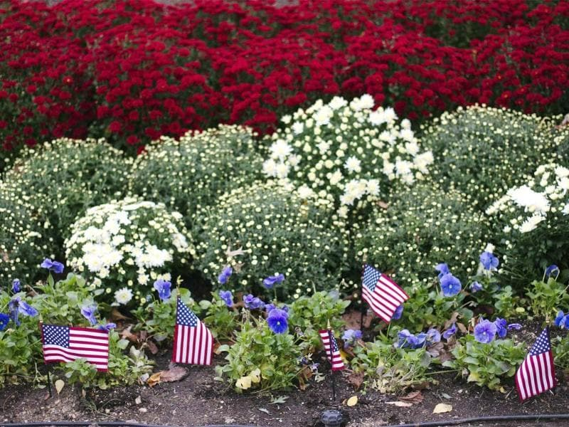 Small American flags stand in a flower bed as preparations continue for US presidential debate at Hofstra University in Hempstead, New York. Reuters/Lucas Jackson