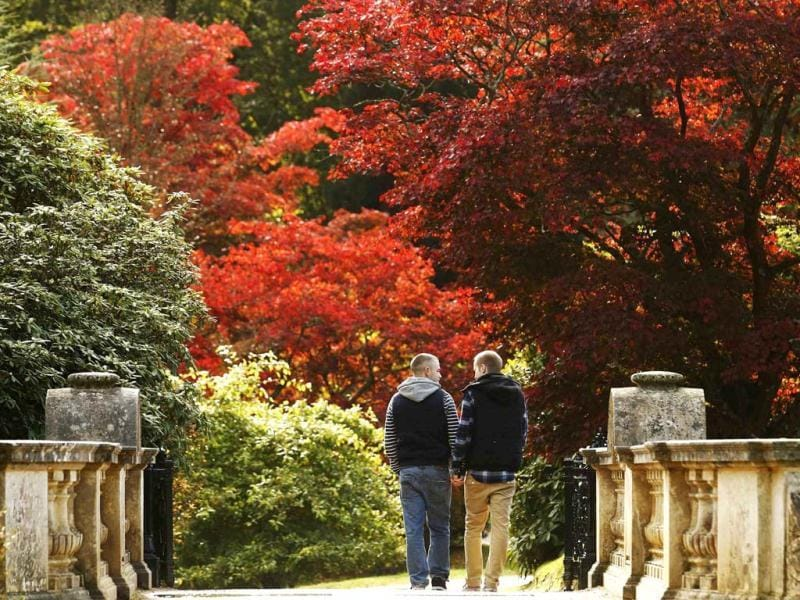 Two men walk hand in hand past changing autumn leaves in Sheffield Park Gardens near Haywards Heath in southern England. Reuters Photo