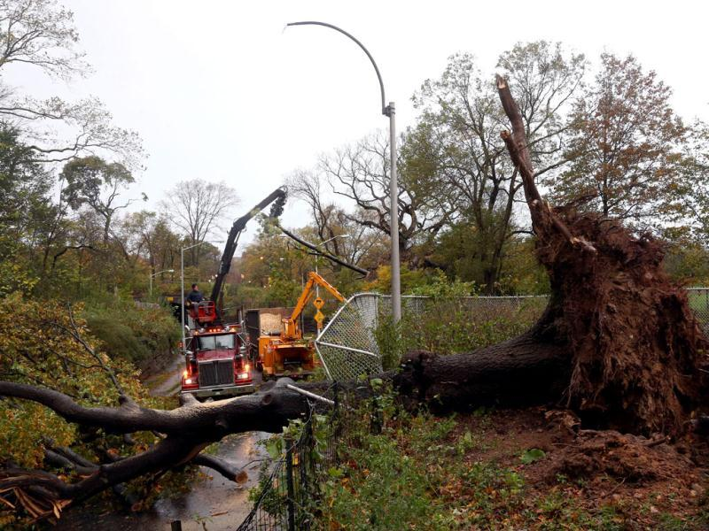 Workers clear a downed tree blocking East 96th street in Central Park the morning after Hurricane Sandy in New York City. AFP Photo