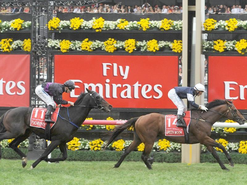 Irish stayer Green Moon riden by jockey Brett Pebble leads Fiorente riden by James McDonald over the line in the 152nd Melbourne Cup at the Flemington Racecourse in Melbourne. AFP PHOTO/Paul CROCK