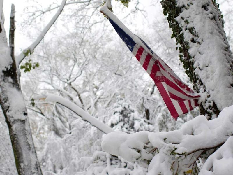 An American flag is seen among trees destroyed by Superstorm Sandy and covered in snow in Manhasset, New York. Reuters/Shannon Stapleton