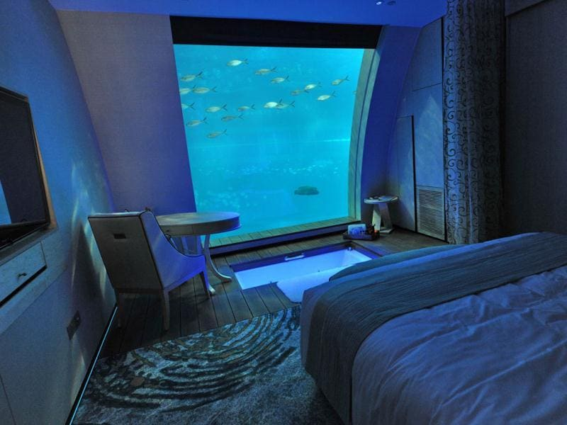 A suite that offers a window panel view of South East Asia aquarium, the world's largest oceanarium in Sentosa Resort World marine life park. (AFP Photo)
