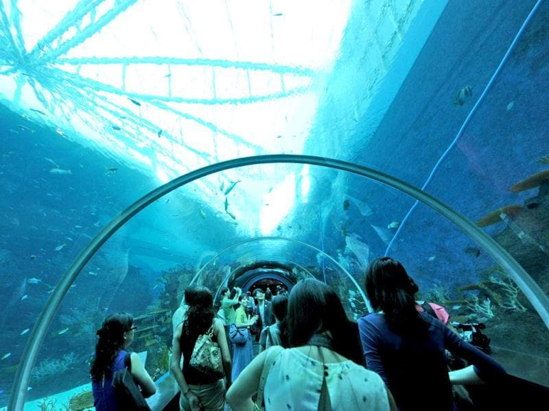 Guests walk through the South East Asia aquarium, the world's largest oceanarium at Sentosa Resort World marine life park. (AFP Photo)
