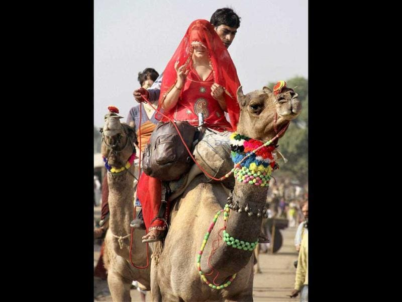 A foreign tourist, dressed up in an Indian outfit, enjoys a camel ride during inaugural function of the annual Pushkar Fair in Pushkar. PTI