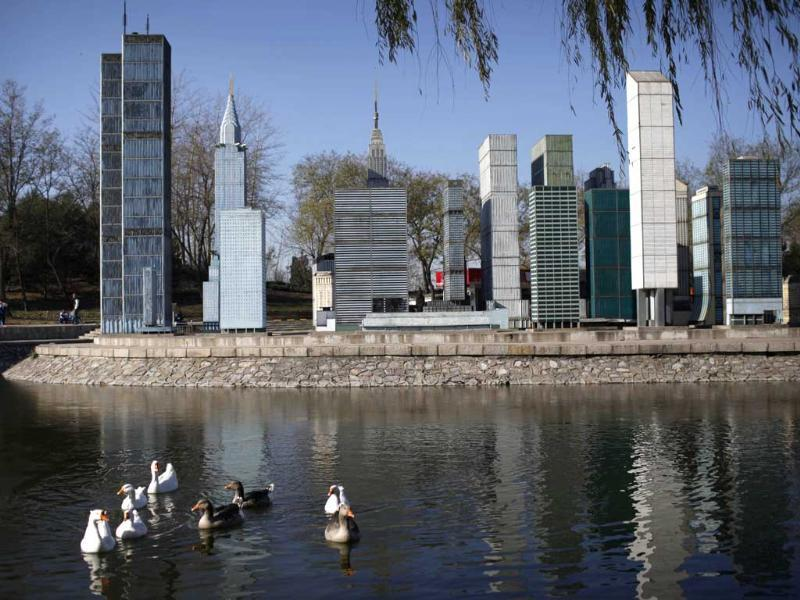 A flock of ducks swam pass the mini replica of Manhattan buildings in Beijing World Park, in the southwestern suburb of Beijing. Photo: AFP