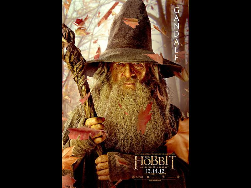 The mighty wizard Gandalf is played by none other than Ian McKellen.
