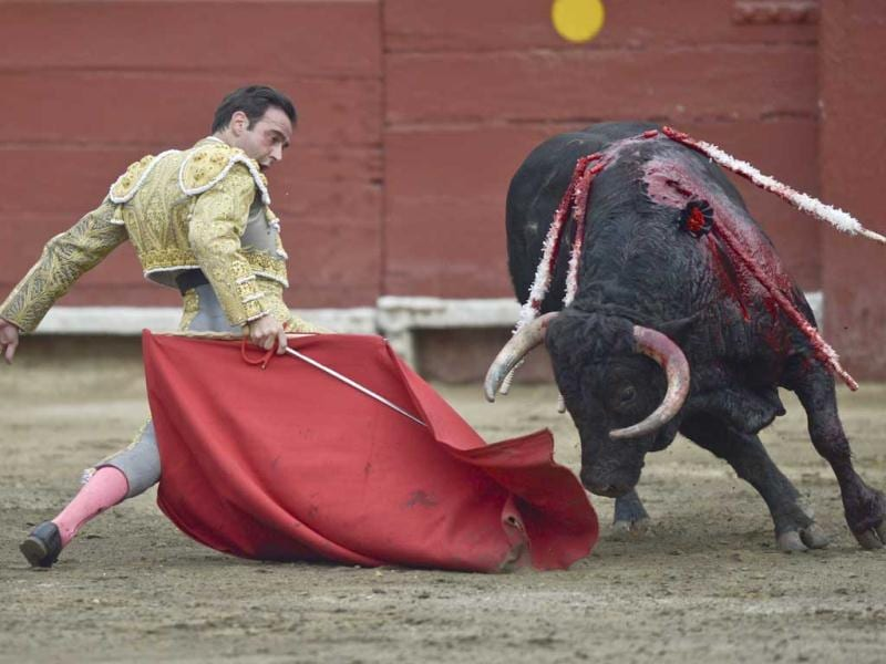 Spanish bullfighter Enrique Ponce performs during the