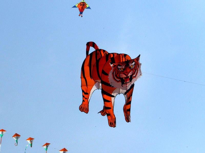A kite displays an image of Tiger during the Delhi International Kite Festival 2012 organised by Delhi Tourism, on the lawns of the India Gate in New Delhi. PTI Photo by Kamal Singh