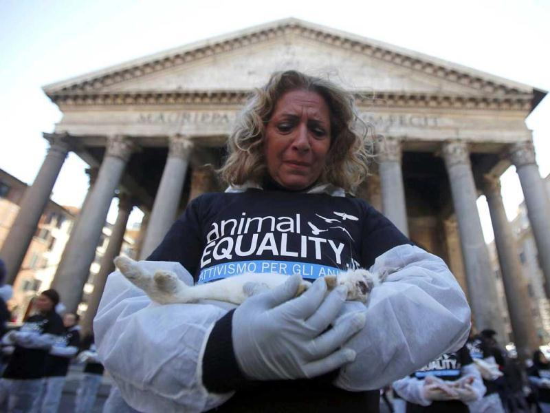 An activist holds a dead rabbit during International Animal Rights Day in downtown Rome. Reuters Photo