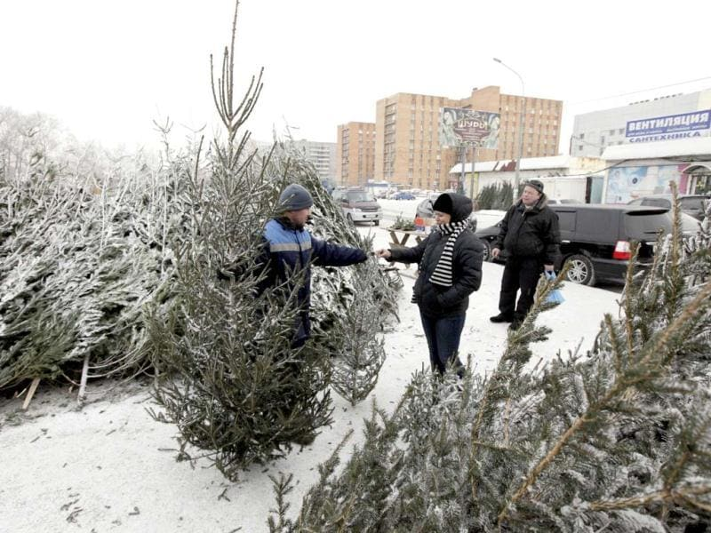 A worker shows fir trees to customers as they select trees ahead of Christmas and New Year celebrations in a street market in Russia's Siberian city of Krasnoyarsk. Reuters/Ilya Naymushin