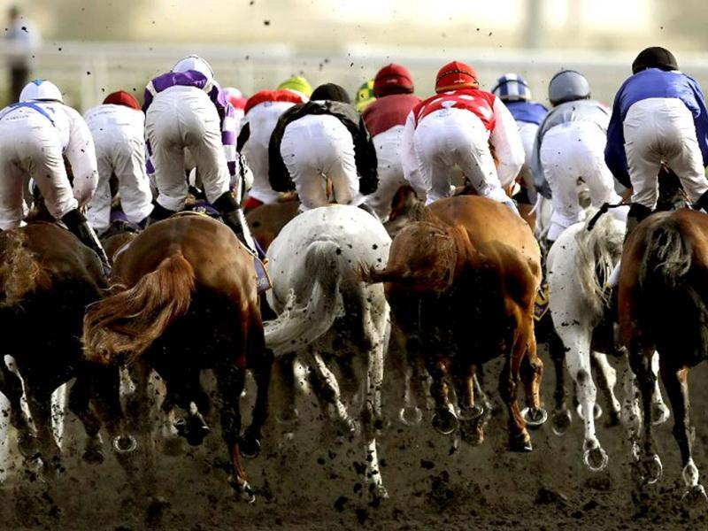 Jockeys compete in the Dubai Kahayla Classic horse race at the Dubai World Cup, the world's richest horse race with a prize money of 10 million US dollars, in the Gulf emirate on March 31, 2012. AFP Photo