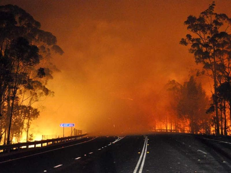 This handout picture provided by New South Wales Rural Fire Service (NSW Rural Fire Service) shows trees burning and smoke billowing from a fire along the Princes Highway at Deans Gap in the Shoalhaven area in New South Wales. AFP photo