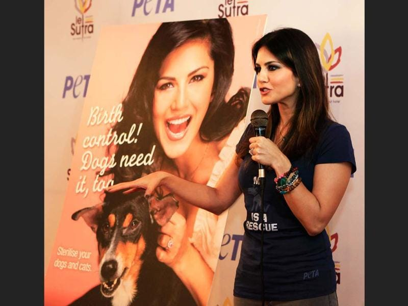 Sunny Leone at the PETA campaign on Thursday, Jan. 10, 2013. (Photo by Saroj Kumar Dora / HT)