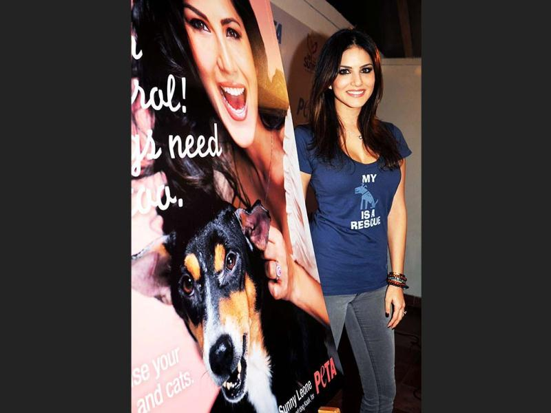 Canadian-born Indian actor Sunny Leone poses during a promotional event for the People for the Ethical Treatment of Animals (PETA) in Mumbai on January 10, 2013. (AFP PHOTO)