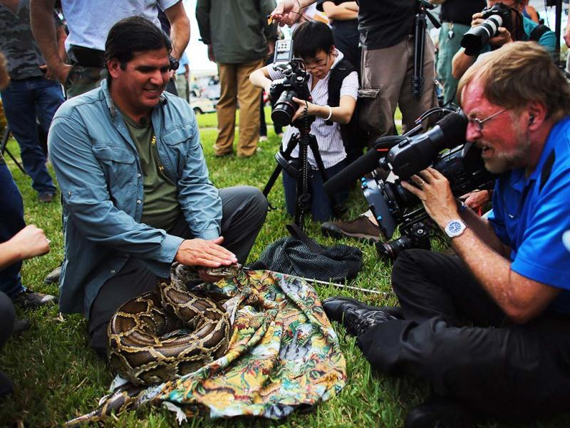 A Burmese python is held by Jeff Fobb as he speaks to the media at start of the 2013 Python Challenge in Florida. The state is offering cash prizes to whoever brings in the longest python and whoever bags the most pythons by the time the competition ends at midnight Feb 10. (AFP Photo)