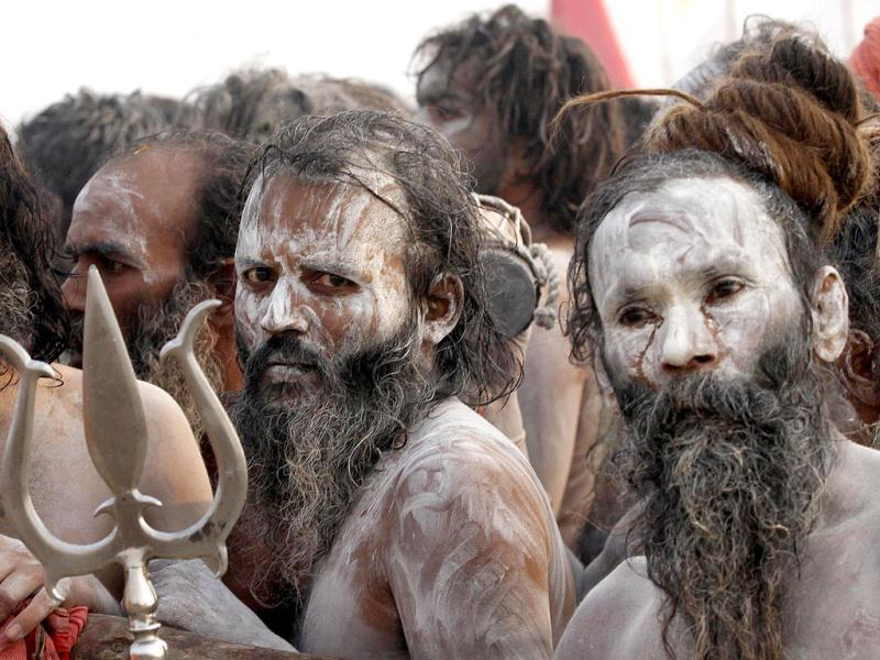 All Naga Sadhus participate in the