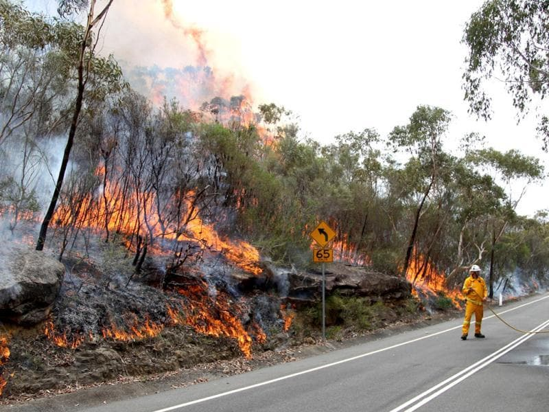 A firefighter keeps an eye on a blaze burning in the Sydney suburb of Pittwater. AP