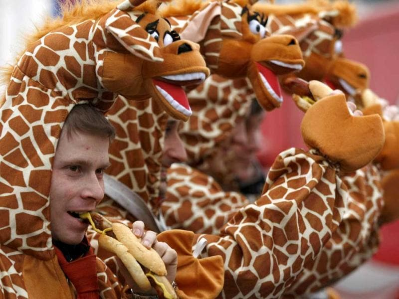 Men dressed in giraffe costumes eat sausages during