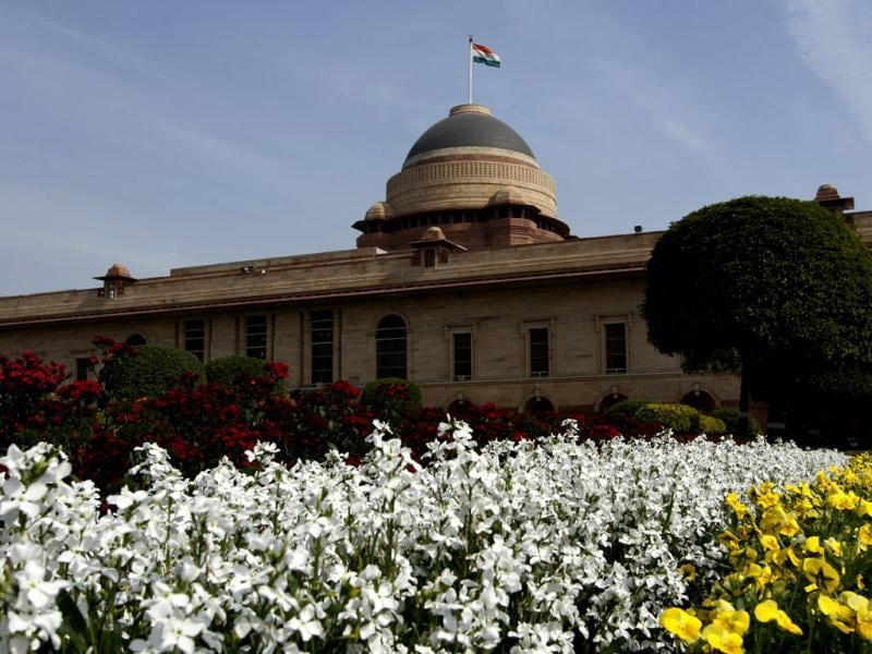 The gardening team has made special efforts to keep the colour theme of flowers a predominant yellow and white at the Mughal Gardens at Rashtrapati Bhawan. HT/Sanjeev Verma