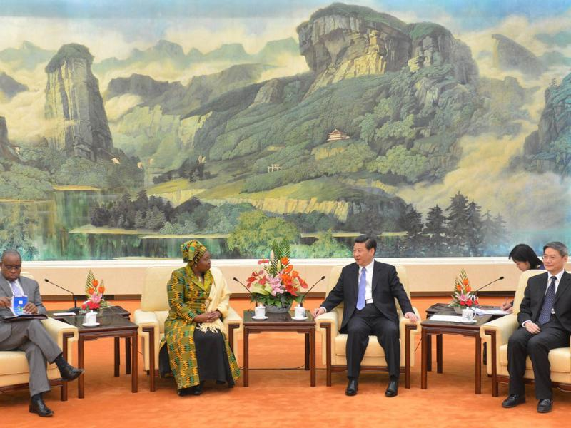 Chairperson of the African Union Commission, Dr Nkosazana Dlamini-Zuma meets with the Chinese Communist Party secretary general and the countries new leader Xi Jinping at the Great Hall of the People in Beijing. AFP/Mark Ralston