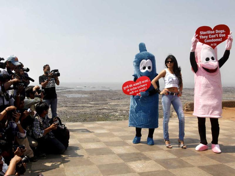 Bollywood film actress and model Sherlyn Chopra, (C), along with two members of PETA hold signs that read 'Sterilise Dogs they can't use condoms!'.Sherlyn was part of an awareness campaign in Mumbai on Tuesday. (HT Photo)