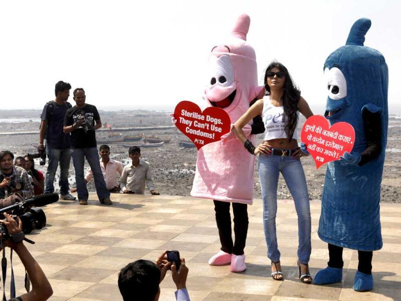 Actress Sherlyn Chopra, (C) poses with PETA members during an awareness campaign in Mumbai on February 19. (HT Photo)