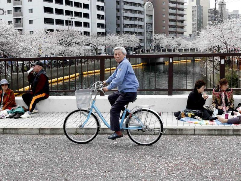 People have lunch on a road covered with the petals of cherry blossoms in Yokohama. AP/Koji Sasahara