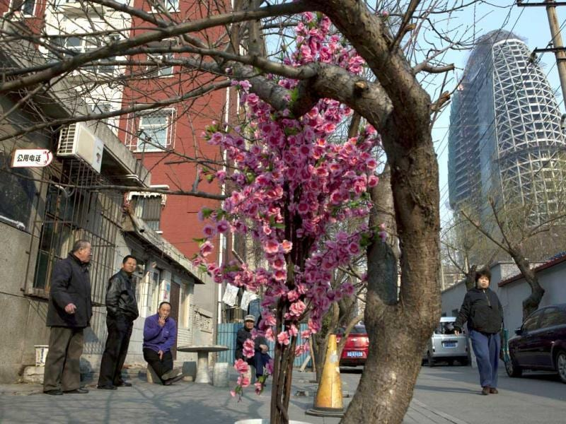 Residents gather outdoors to enjoy the sunny weather near plastic flowers used to decorate a bare tree in Beijing. AP Photo
