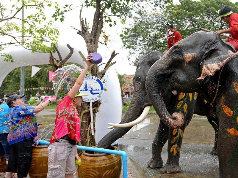 Foreign tourists take part in water battles with elephants as they join celebrations marking the Songkran Festival in Ayutthaya province. AFP