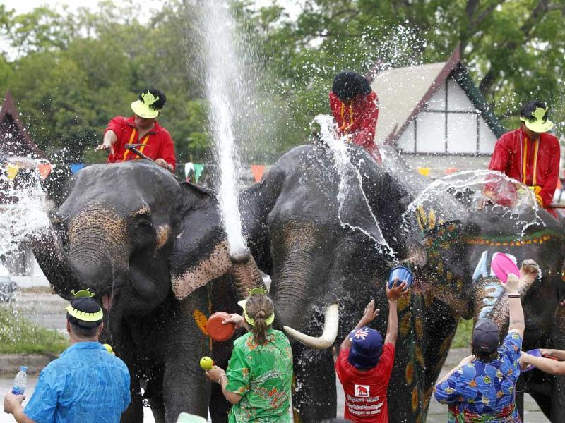 Elephants spray water at tourists in celebration of the Songkran water festival in Thailand's Ayutthaya province, about 80km north of Bangkok. Songkran marks the start of Thailand's traditional New Year. Reuters