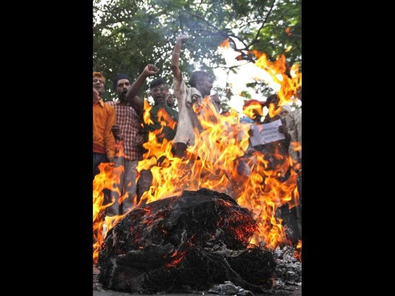 People burn an effigy representing Pakistan after Sarabjit Singh died in Lahore jail in Jammu. (AP)