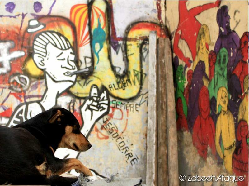 Graffiti in the backdrop at Hauz Khas Village, Delhi. (Photo credit: Zabeeh Afaque)